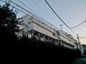 MINAMI AOYAMA_pic02